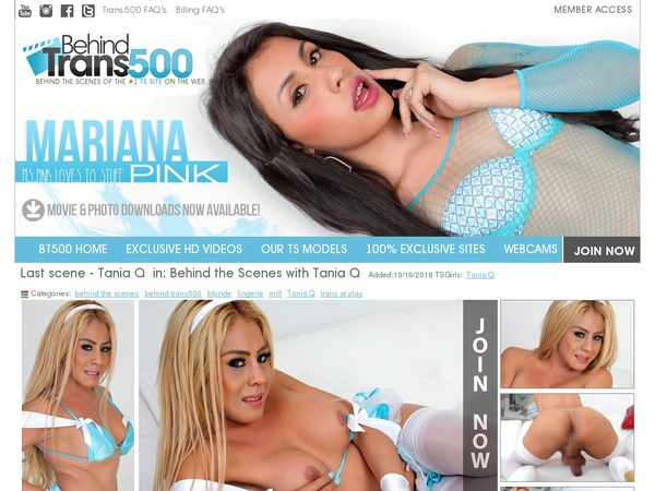 Behindtrans500 Member Account