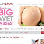 Discount Big Wet Asses Tour