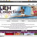 Flex Collection New Accounts