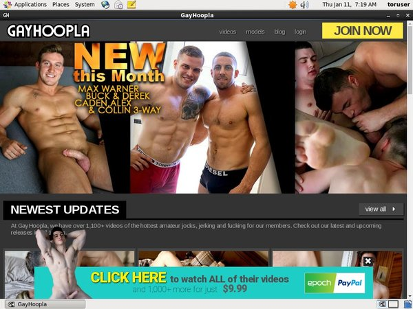 Gay Hoopla Discount Monthly