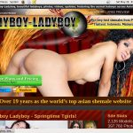 Ladyboy Ladyboy Limited Promotion