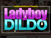 Ladyboy Wank Discount Rate s2