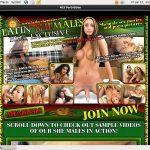 Latin Shemales Site Rip Download
