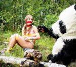 Pandafuck.com Bank