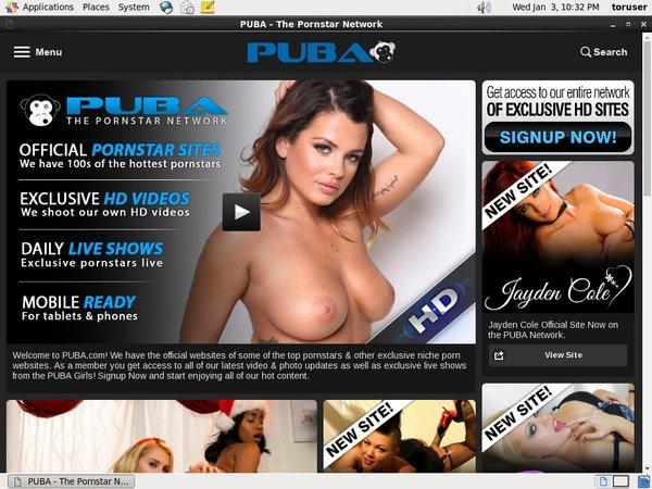 PUBA Epochstats