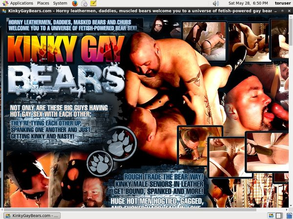 Premium Accounts Free Kinkygaybears