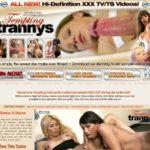Free Trannys Tempting Logins