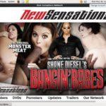 Shane Diesel Membership Free