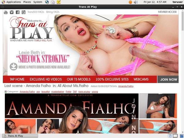 Trans At Play Wnu.com Page