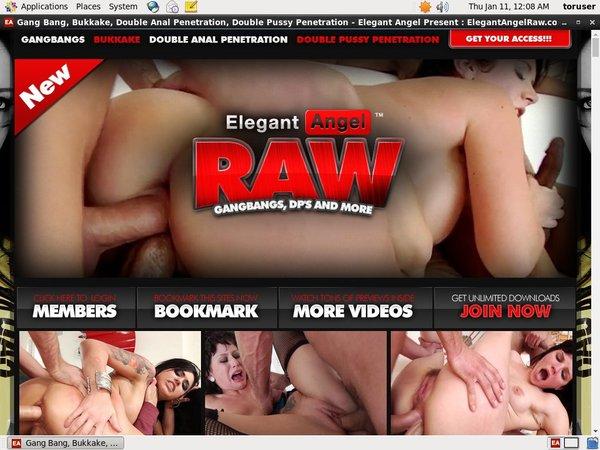 Free Elegant RAW Account Logins