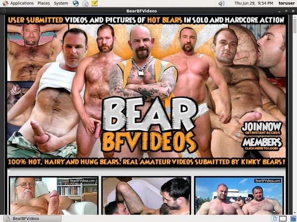 Bearbfvideos.com With Free Trial
