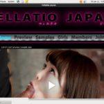 Fellatio Japan Updates