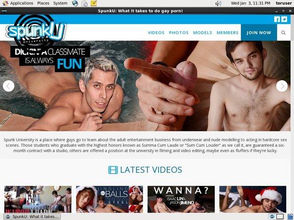 Spunku.com Hd Videos