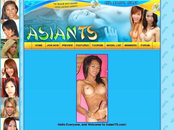 Asian TS Search