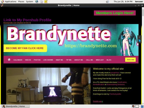 Brandynette.com With Discover Card