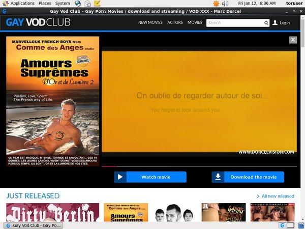 Gayvodclub.com Paypal