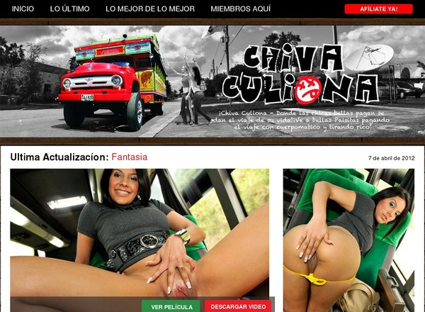Chivaculiona.com Discount Free