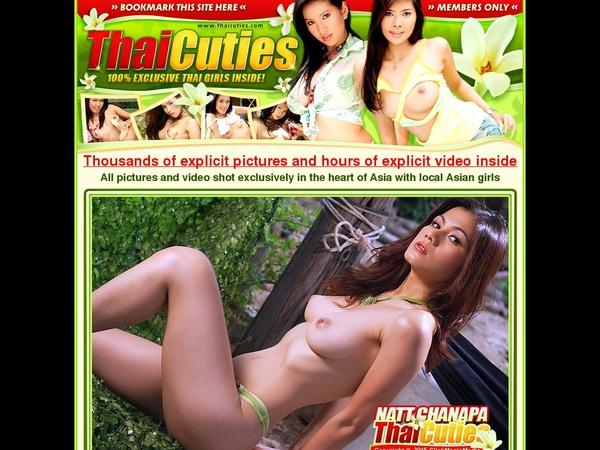 Thai Cuties Login Codes