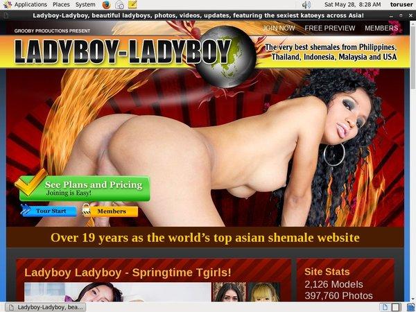 Ladyboy Ladyboy User Name Password