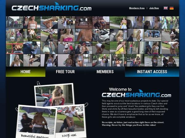 Czech Sharking Hacked Accounts