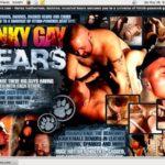Kinky Gay Bears Site Passwords