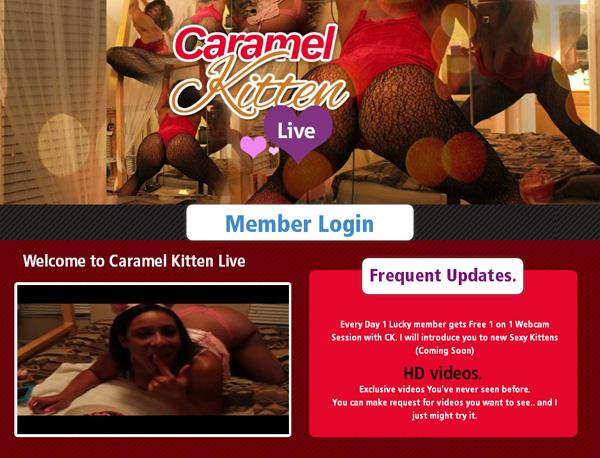 Caramel Kitten Live Preview